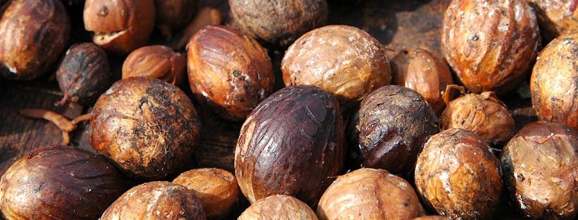 scent-corner-indonesia-nutmeg-0