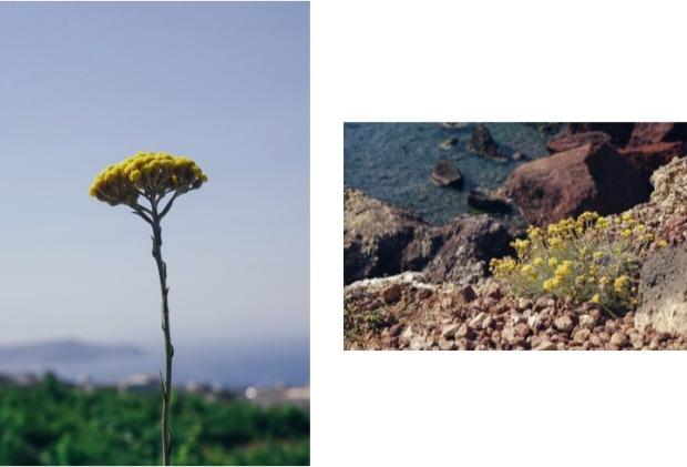 Santorini_Diary2