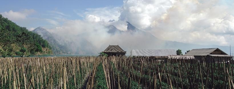 scent-corner-osmoz-escale-indonesie-0